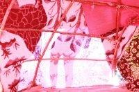 No Ninho da Serpente – Círculo de Mulheres